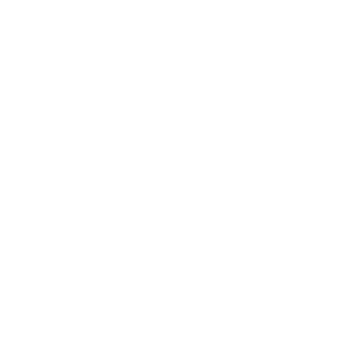 Selba S.A. - Genève